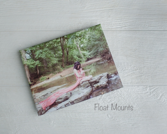 Float Mount