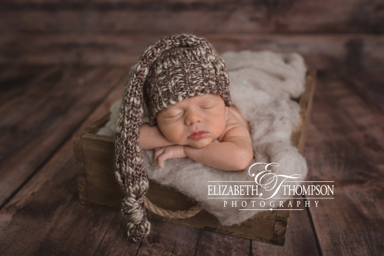 Newborn Photographer Clarksville TN