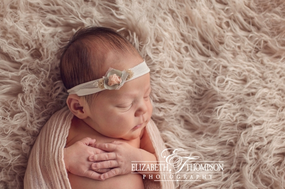 Newborn Photographer Clarksville, Newborn Photographer Nashville, Newborn Photographer TN