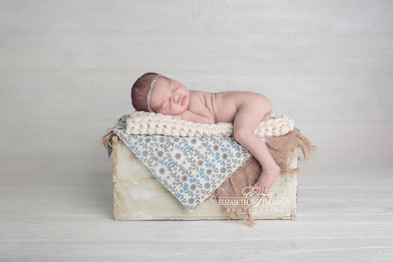 Newborn Photographer Clarksville and Nashville TN, Elizabeth Thompson Photography